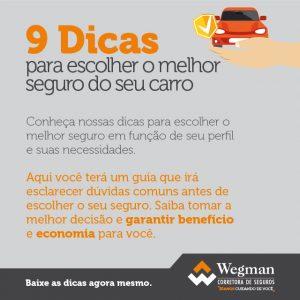 Tease Wegman Dicas Seguro Auto